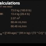 Case Calculator Results